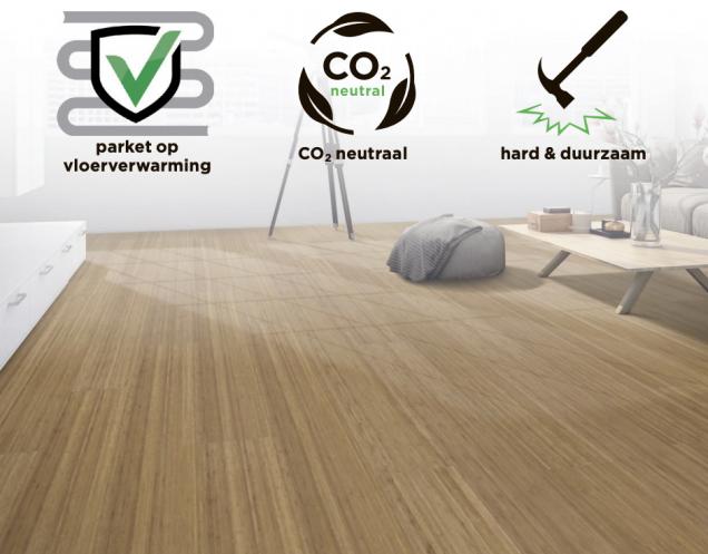 Bamboo elite premium click